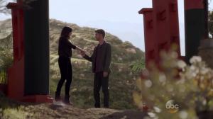 Agents Of SHIELD - S02E16 (1)